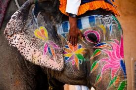 auksinis-indijos-trikampis-ir-egzotiskoji-pietu-indija