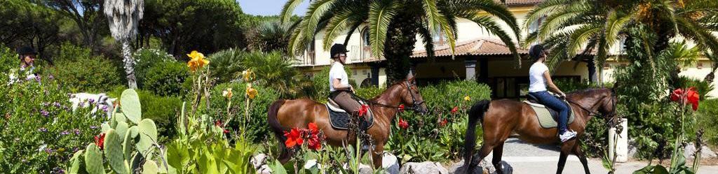 horse country 2 ilga
