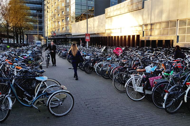 Daug dviračių Amsterdamo centrinėje stotyje