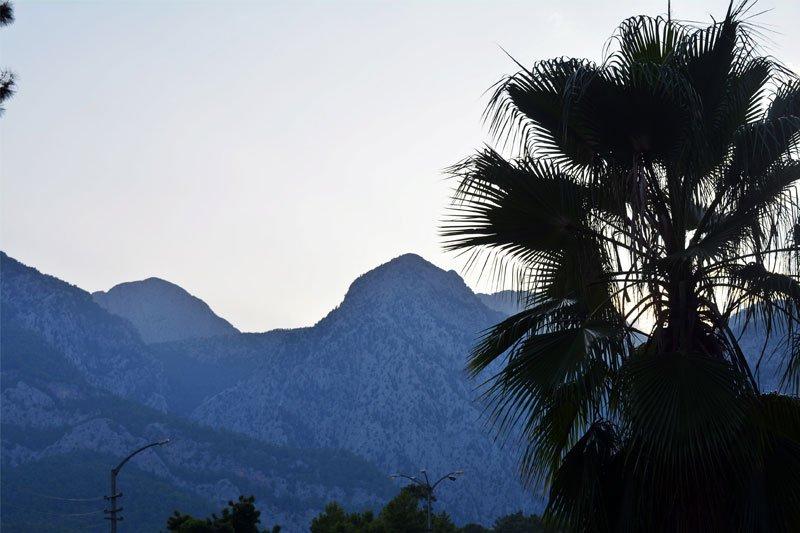 palmes Beldibyje