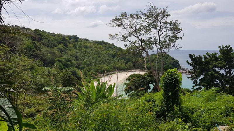 Tropinis miškas, įlanka, Tailandas