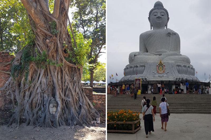 Susipynusios medžio šaknys, skulptūra, milžiniška Budos skulptūra, Tailandas