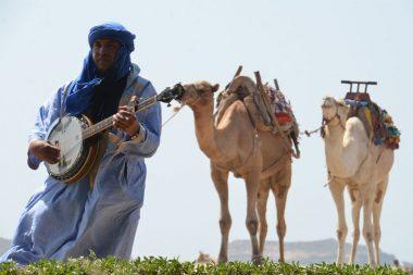 Marokietis groja instrumentu, kupranugariai fone